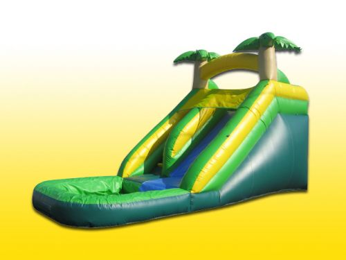 15ft Palm Tree Water Slide
