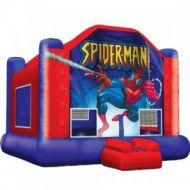 13x13 Spider Man