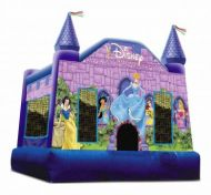 13x13 Disney Princess Castle