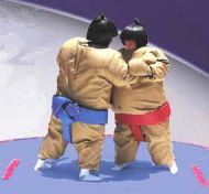 Sumo Suits & Pads