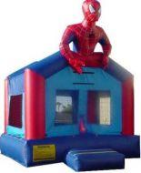 13x13 Spider Dude