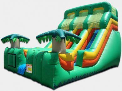 21' Dual Lane Tropical Slide